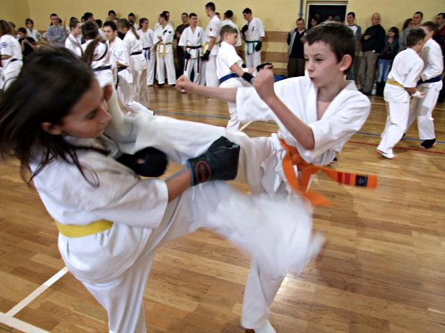 Karate: Egzamin 2012