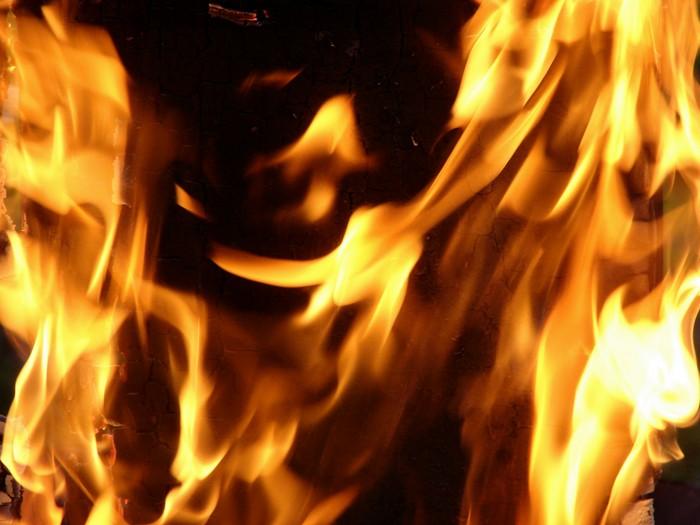Zapłonął las - Źródło: sxc.hu / Stefaan Smets