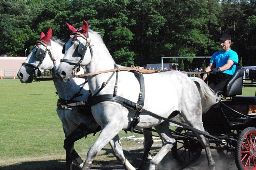 Tuliszków przyciągnął miłośników koni - Foto: ma