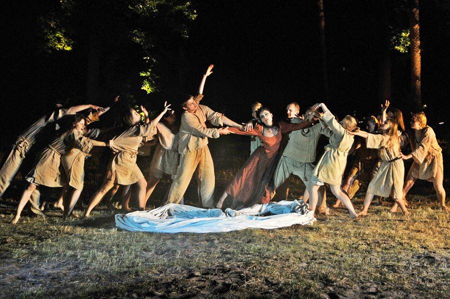 Wideo: Zbrodnia i kara w leśnych ostępach - foto: M. Derucki
