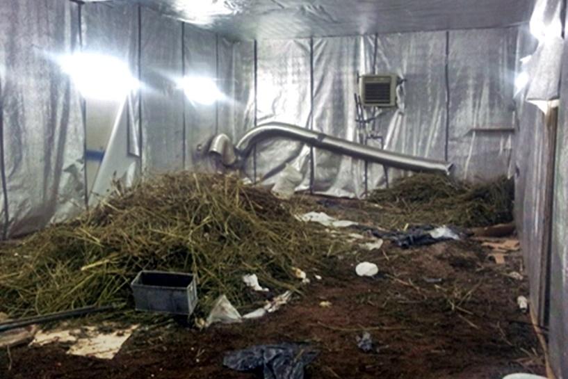 Znaleźli pół tony marihuany! CBŚ przejęło pod Turkiem narkotyki warte 5 mln zł - foto: lodzka.policja.gov.pl