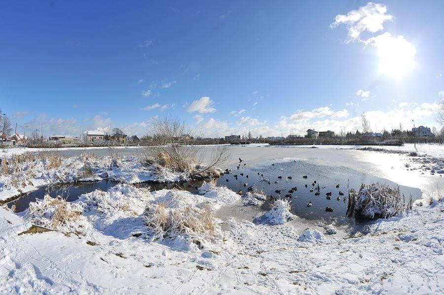 Wypoczynek zimowy z ZMW