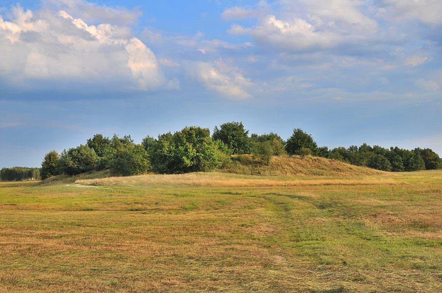 Niedokończony średniowieczny gród za Przykoną, czyli Smulska Górka - foto: M. Derucki