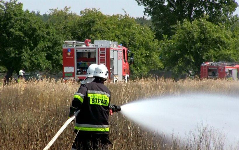 Wideo: Zboże płonęło w Targówce