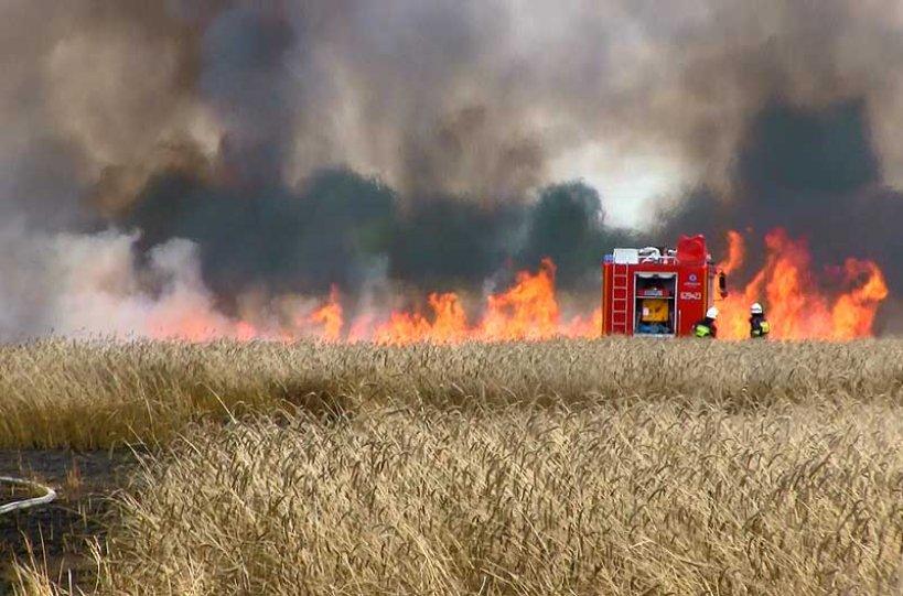 Zasady bezpieczeństwa pożarowego w czasie żniw