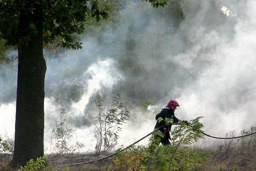 Wideo: Paliło się przy al. NSZZ Solidarność
