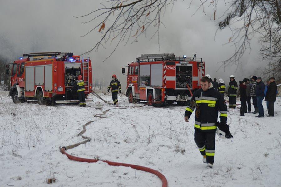 Dąbrowica: Gasili pożar przy szkole