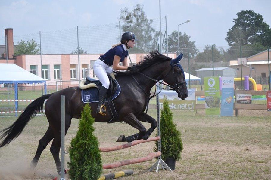 Kowale Księże: Piękne konie i pędzące zaprzęgi - Foto: G. Oblizajek