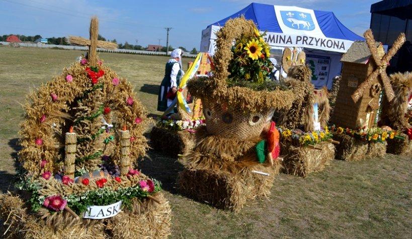 Radyczyny: Rolnicy mają dożynki, OSP ma 80 lat