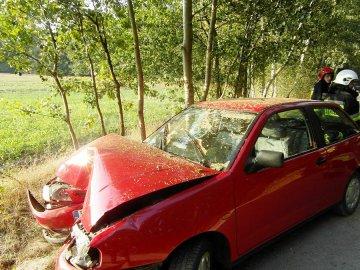 Wjechała Ibizą w drzewo. Dzieci trafiły do szpitala - foto: KP PSP Turek