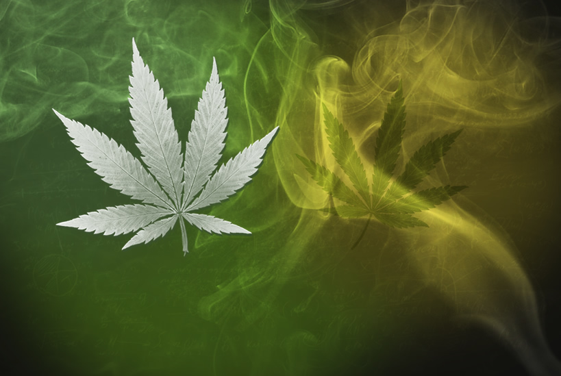 22-latek pachniał marihuaną. Noc spędził w areszcie