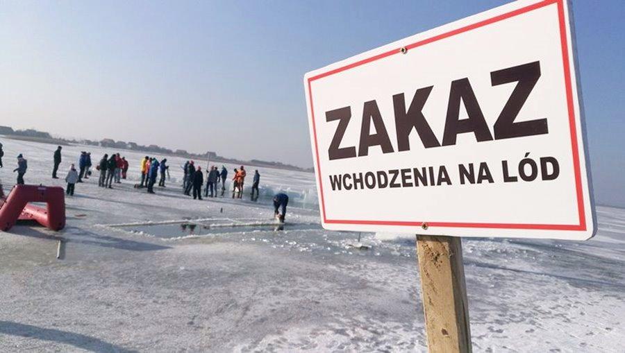Inwazja Morsów: Ta fotorelacja przyprawi Was o dreszcze - Foto: Mors Jarek Juszczak