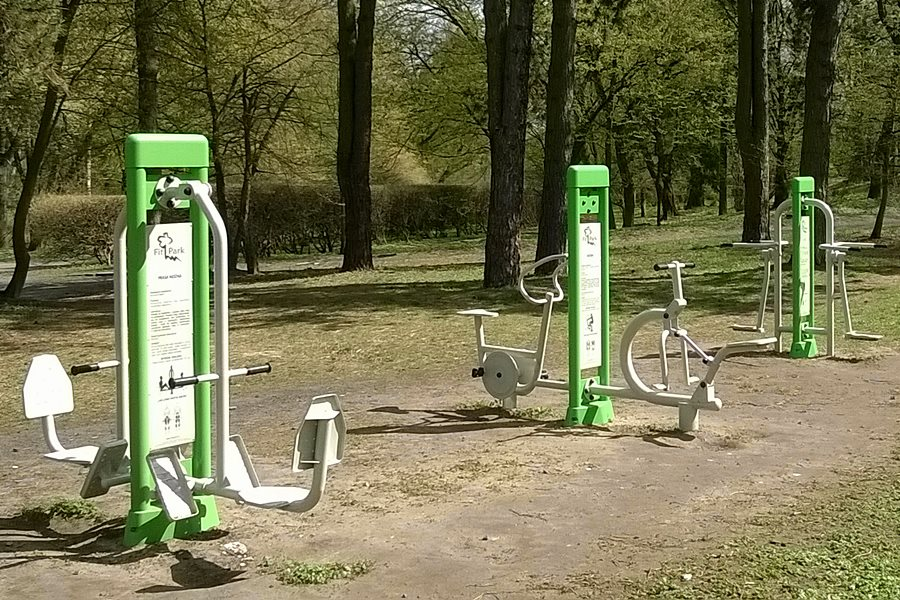 Powstaną nowe siłownie plenerowe - foto: Joanna Kośmider / wikimedia.org