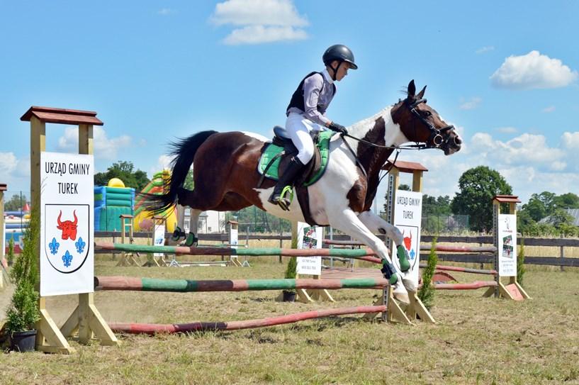 Kowale Księże: Konie pokonywały przeszkody, powożący ścigali się z czasem - foto: Arkadiusz Wszędybył