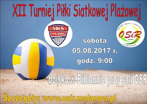 XII Turniej Piłki Siatkowej Plażowej w Bibiannie