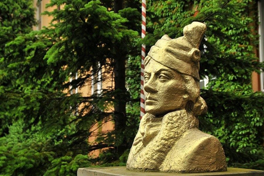 Kościuszko. Rewolucjonista, którego nie znamy - foto: M. Derucki