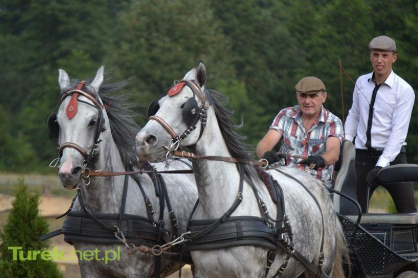 Turek: Podziwiaj zmagania powożących i koni. XVI Otwarte Zawody już 17 września