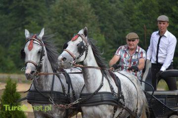 Turek: Podziwiaj zmagania powożących i koni....