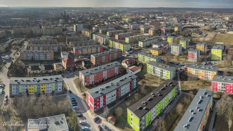 Kolorowy Turek - foto: Wiesław Karbowy