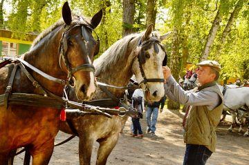 Dobra: Paradą zaprzęgów konnych otworzyli sezon...