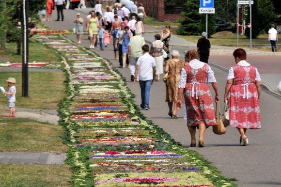 Gm. Dobra: Skęczniewskie dywany z kwiatów