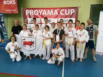 Turniej karate kyokushin i kickboxingu
