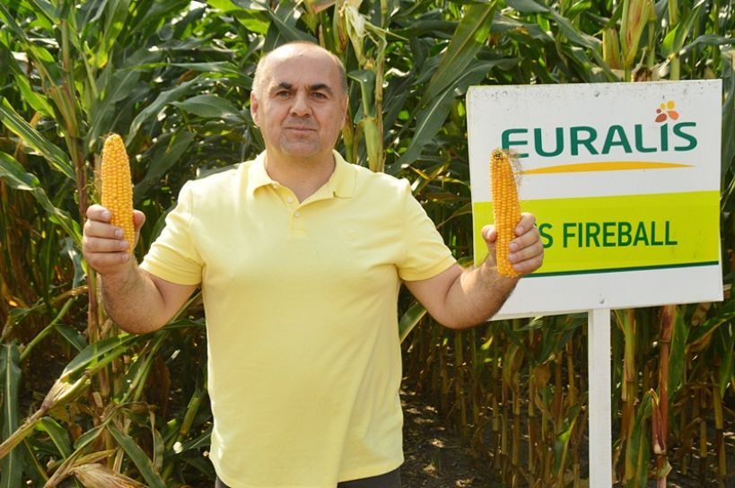 Głuchów: Tłum rolników na polu kukurydzy. Oglądali koszenie, podziwiali odmiany - foto: Arkadiusz Wszędybył