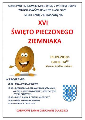 Święto Pieczonego Ziemniaka w Tarnowskim Młynie