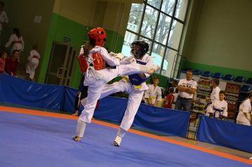 Tuliszkowianie na Kyokushin Karate Calisia Cap