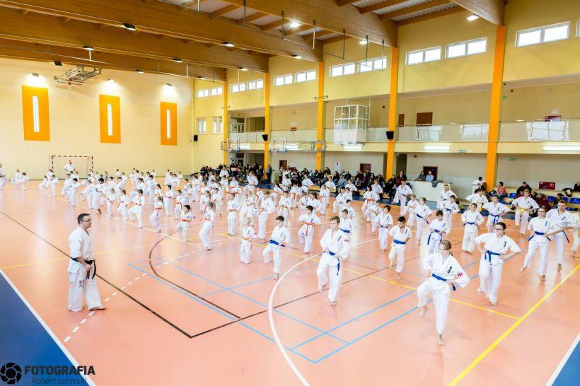 Egzamin Karate Kyokushin wg wymogów Światowej Organizacji Karate - foto: Robert Łajdecki