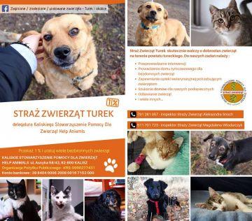1% dla Turku: Straż Zwierząt liczy na wasze wsparcie