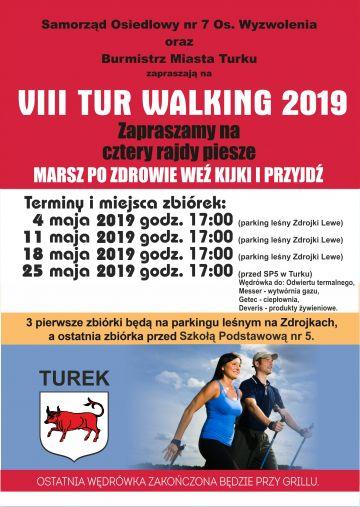 VIII Tur Walking 2019