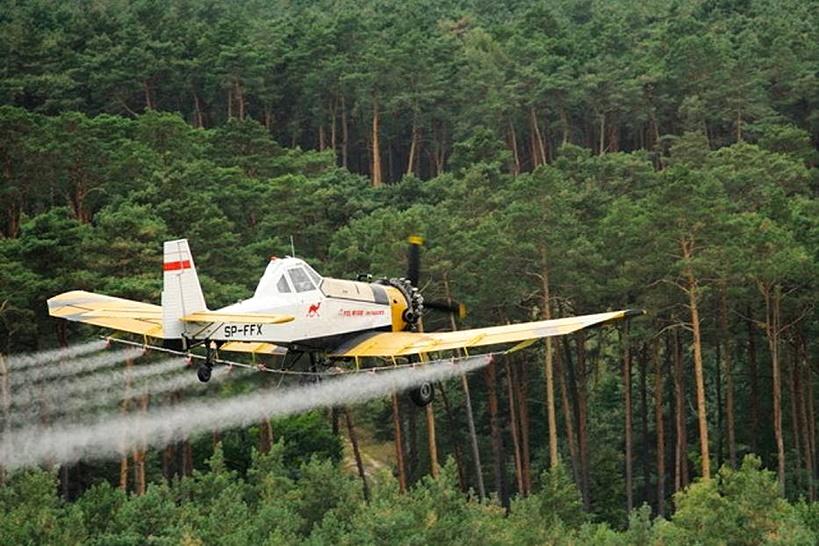 Okresowy zakaz wstępu do lasu - nadchodzi czas oprysku - Źródło: Nadleśnictwo Turek