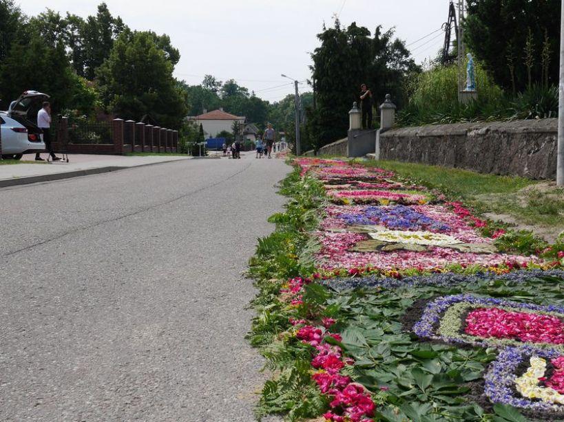 Dywany kwiatowe w Skęczniewie.  - foto. Zuzanna Szczepocka