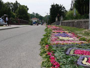 Dywany kwiatowe w Skęczniewie.