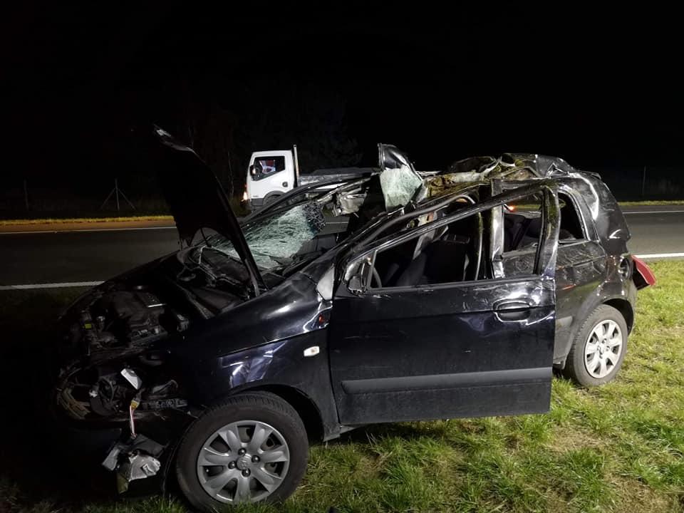 Łoś wtargnął na autostradę A2 i spowodował wypadek - foto: OSP KSRG Kuny