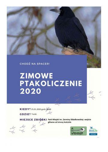 Turkowska Grupa OTOP zaprasza na Zimowe Ptakoliczenie 2020
