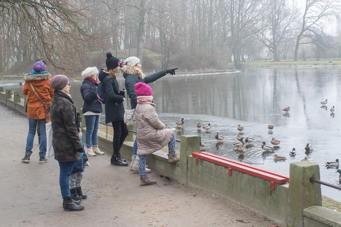 Mieszkańcy i członkowie grupy OTOP liczyli ptaki w dużym parku - foto: Karol Fornalczyk