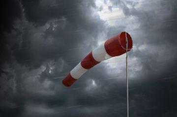 Ostrzegamy przed silnym wiatrem dla Turku i...