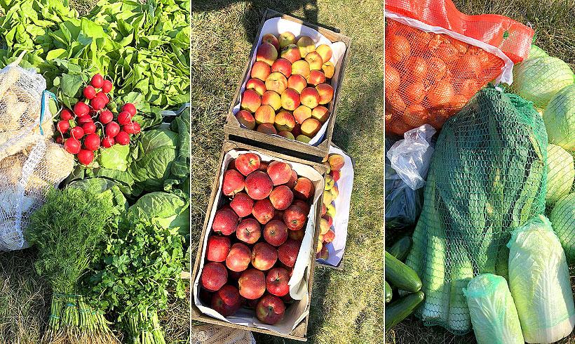 Zamów świeże polskie warzywa i owoce prosto do domu!