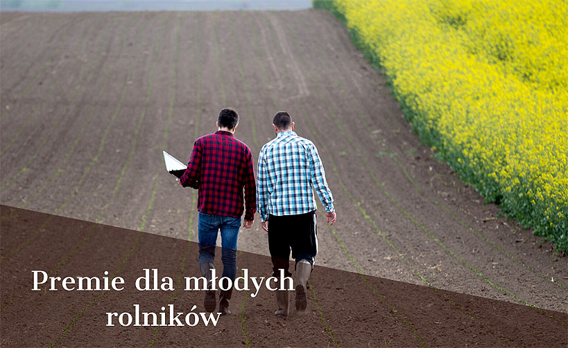 150 tys. zł premii dla młodego rolnika. Wnioski od 3 czerwca.