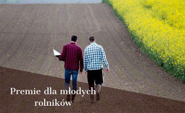 150 tys. zł premii dla młodego rolnika. Wnioski...