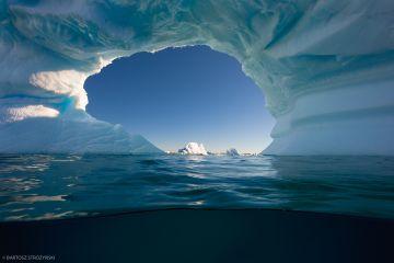 Trzy sztuki w Antarktyce - nowa wystawa w muzeum