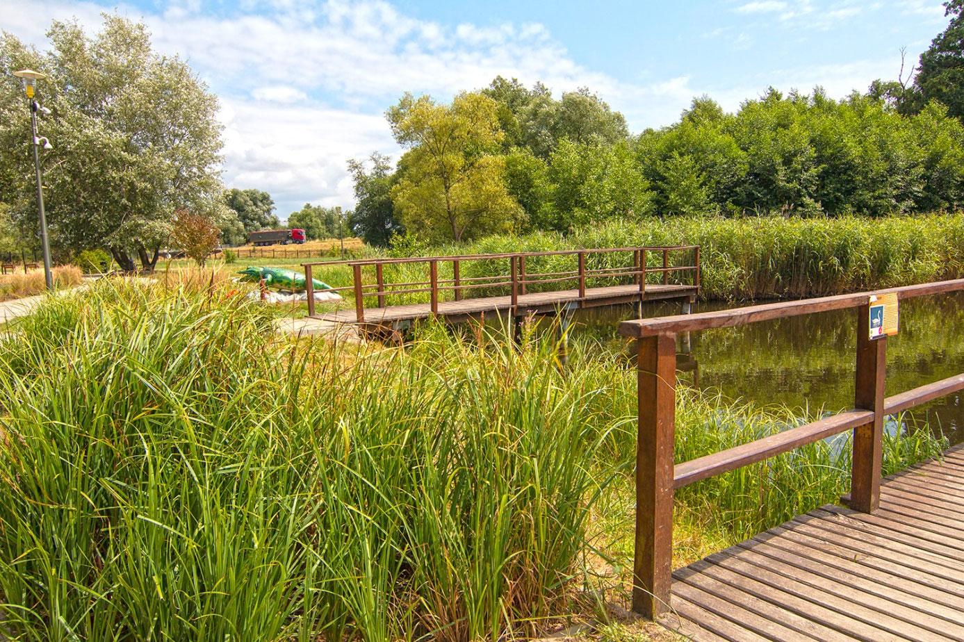 Kodeks Dobrych Praktyk Parkowych -parki miejskie przyjazne przyrodzie