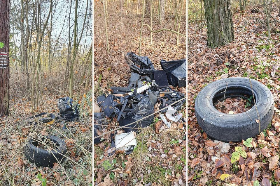 Śmieci w leśnictwie Zdrojki. Leśnicy ostrzegają przed surowymi karami