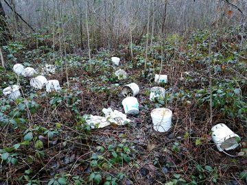 Kolejne niechlubne znalezisko w lasach na...