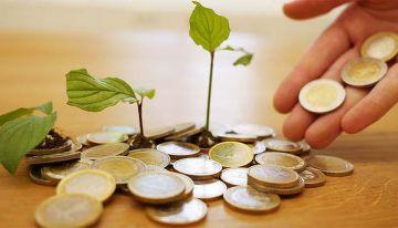 Dopłaty bezpośrednie i obszarowe - wnioski...