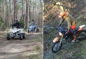 Nielegalna jazda po lesie