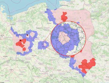 Dwie gminy objęte ograniczeniami w związku z ASF. Cały powiat turecki w I strefie .