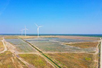 Przykona. Obok wiatraków powstaje farma fotowoltaiczna PV Gryf o mocy 20 MW - fot. Energa